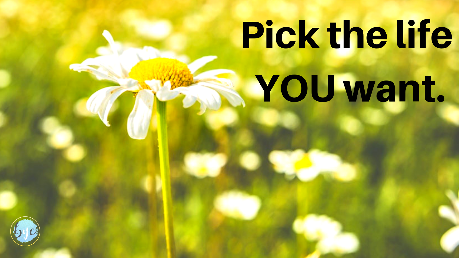 Pick the life YOU want.